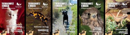 Tierschutzkurier-Sample