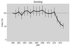 Gruenfink Bestandsuebersicht