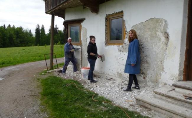 Umbau Tierheim