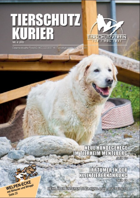 Der neue Tierschutzkurier ist online