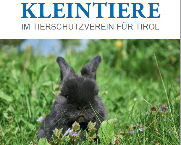Der neue Tierschutzkalender 2019
