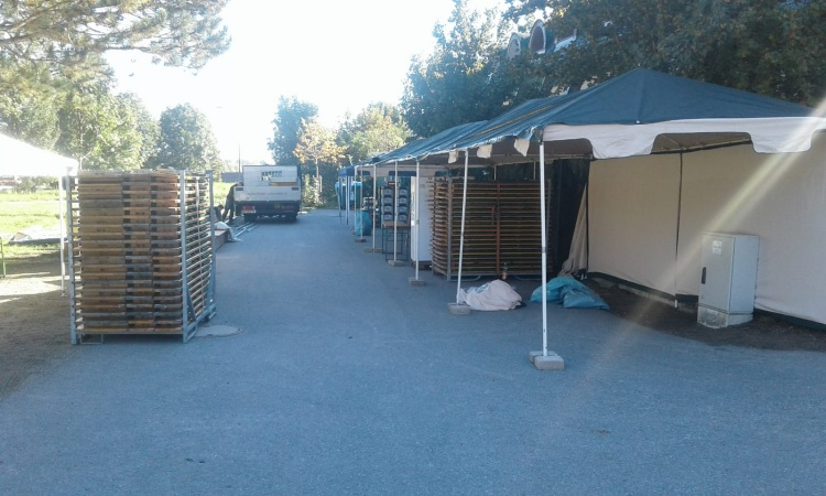 Vorbereitungen fürs Tierheim-Fest laufen auf Hochtouren