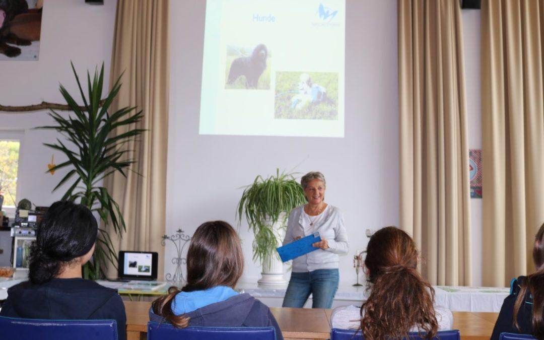 Sachkundekurs zur Hundehaltung (ÖTK Hundezertifikat) im Tierheim Mentlberg