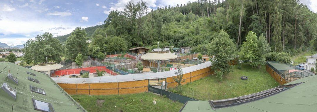 Neue Hundegehege im Tierheim Mentlberg