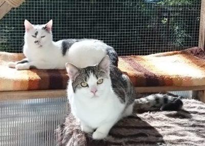 Elvira und Cecil