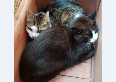 Monty und Lilly