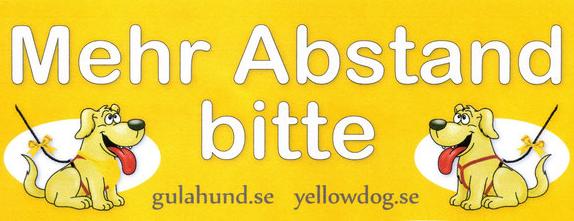 Gelber Hund – Bitte mehr Abstand