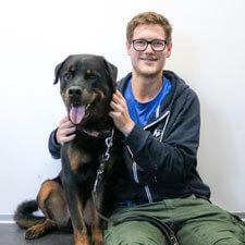 Tierpfleger Hunde