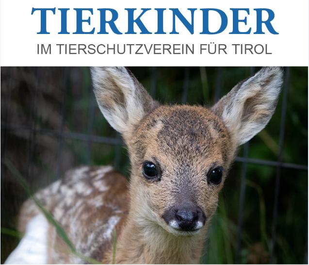 Der neue Tierschutzkalender 2021
