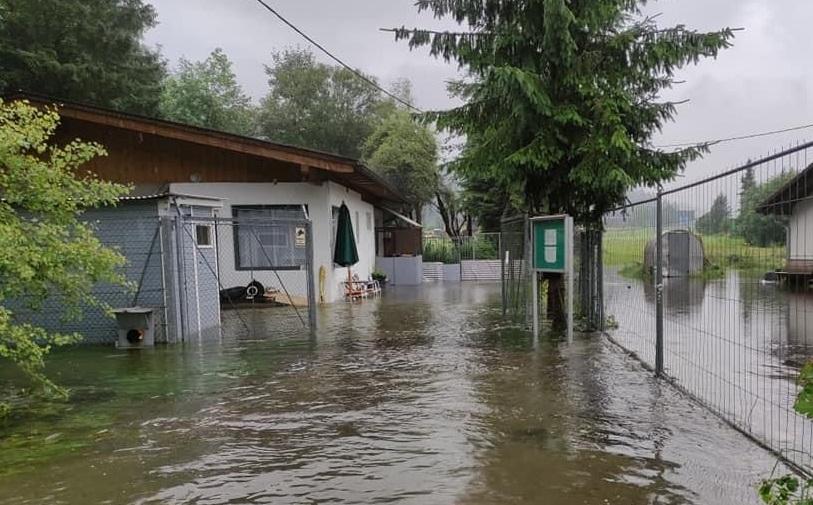 Hochwasser im Tierheim Reutte
